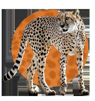 Zoo Keeper Icon