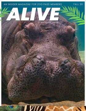 Alive Magazine Fall 2020
