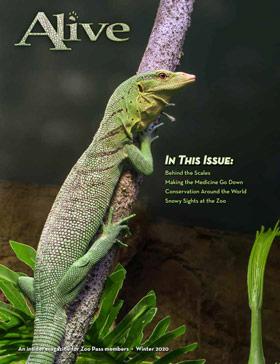 Alive Magazine Cover
