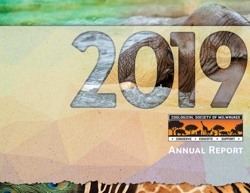 2019 Zsm Annual Report