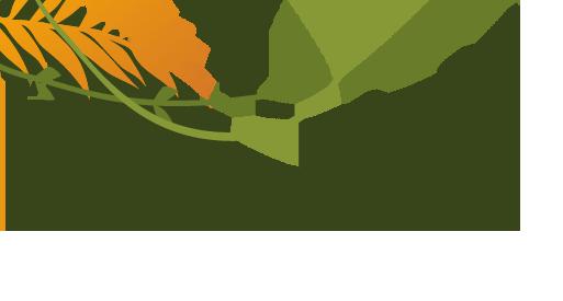 Leaves Background - Left