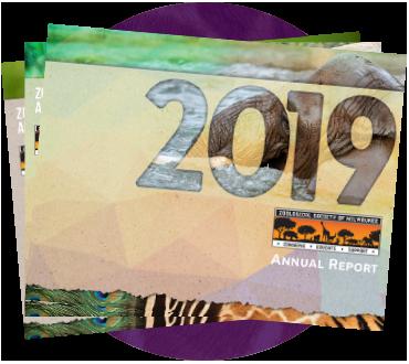 Annual Report Circle Icon