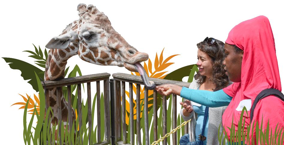Zoo Grants Photo
