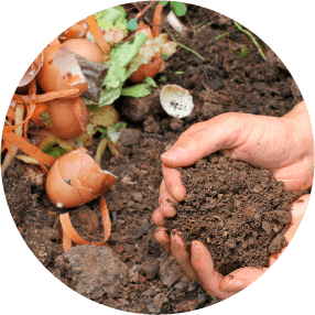 Conservation Education Composting