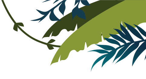 Left Leaves Background