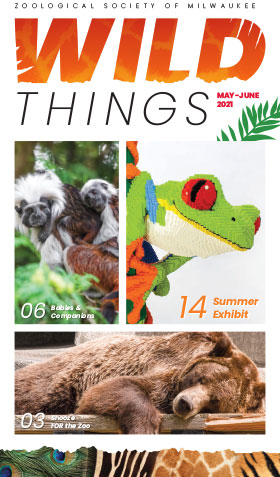 Wild Things: May-June 2021