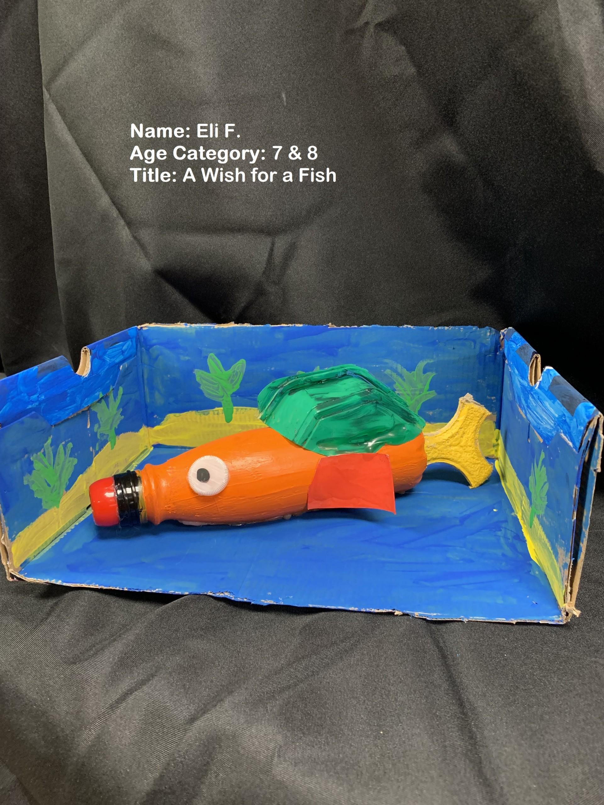 Ferry Eli 2 Scaled