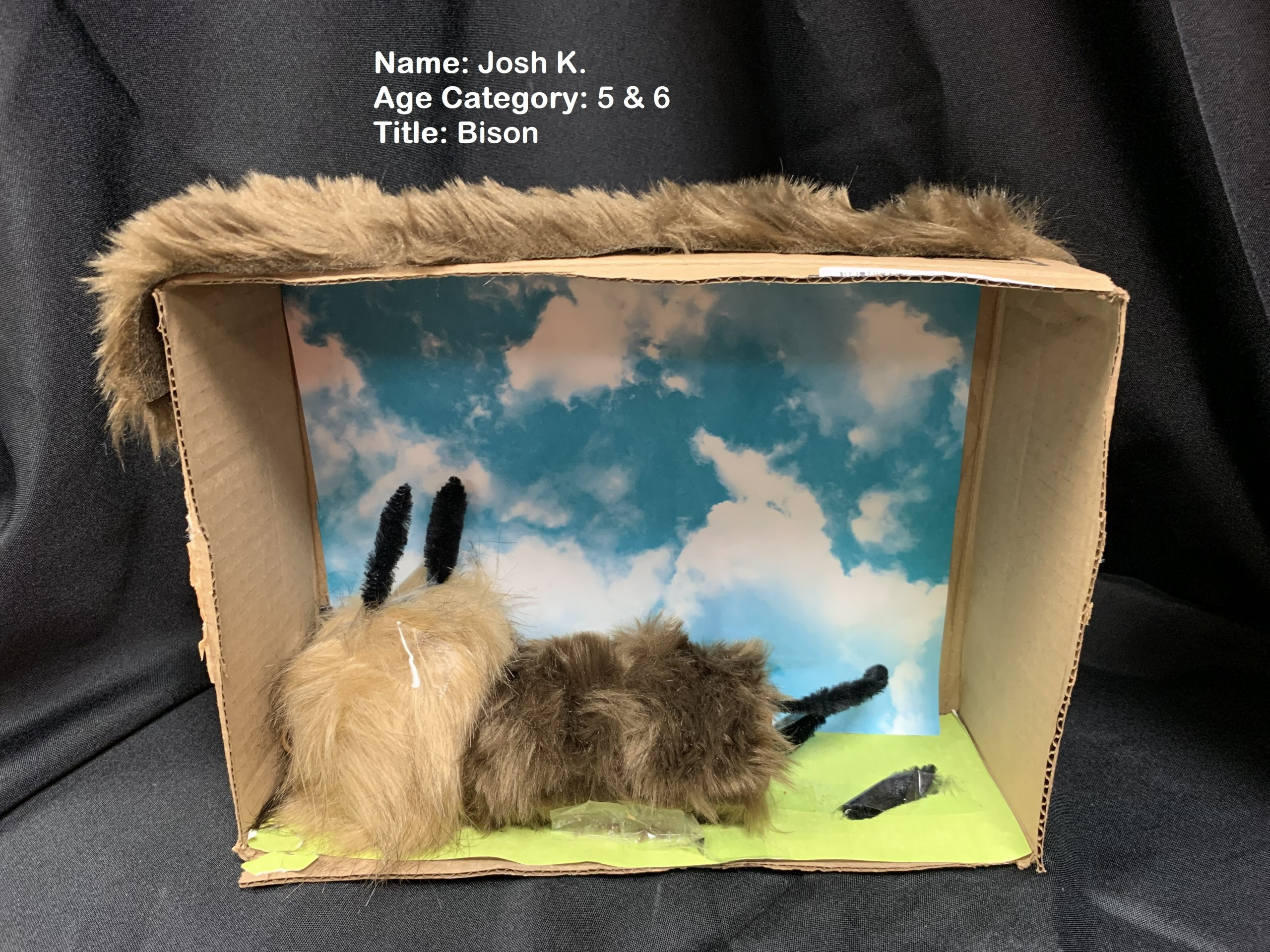 Korpal Josh 2 Scaled