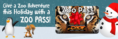 Give a Zoo Adventure This Holiday with a Zoo Pass!