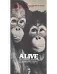 Alive Magazine: Summer 1981