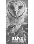 Alive Magazine: September 1982