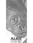 Alive Magazine: Spring 1982