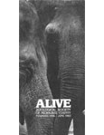 Alive Magazine: June 1983