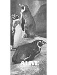 Alive Magazine: Winter 1983