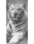 Alive Magazine: Summer 1984