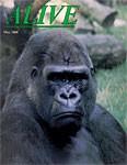 Alive Magazine: Fall 1988