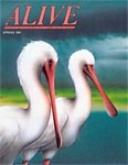 Alive Magazine: Spring 1991