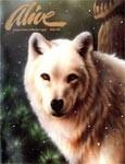 Alive Magazine: Winter 1993