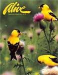Alive Magazine: Fall 1995