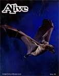Alive Magazine: Spring 1998