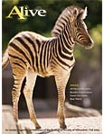 Alive Magazine: Fall 2004