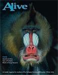 Alive Magazine: Winter 2005