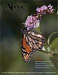 Alive Magazine: Spring/Summer 2011