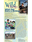Wild Things Newsletter: July 2013