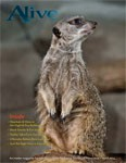 Alive Magazine: April 2014