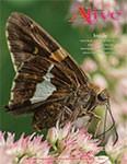 Alive Magazine: Spring 2016