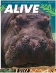 Alive Magazine: Fall 2020