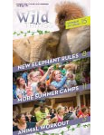 Wild Things Newsletter: January 2020