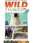 Wild Things Newsletter: November 2020