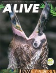 Alive Magazine: Winter 2021